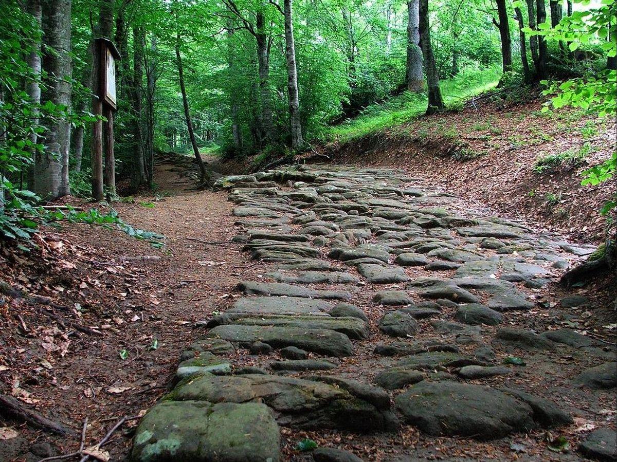 event-La Via degli Dei: Una Giornata Camminando Nella Storia - MATTINA