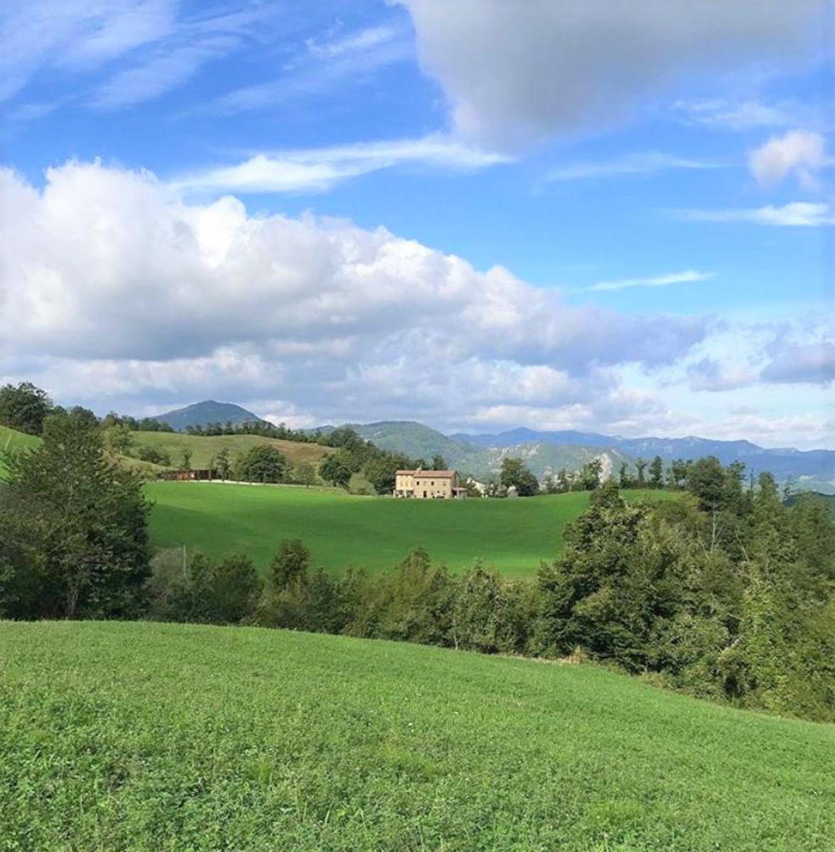 event-Campigna, nel Parco Nazionale delle Foreste Casentinesi