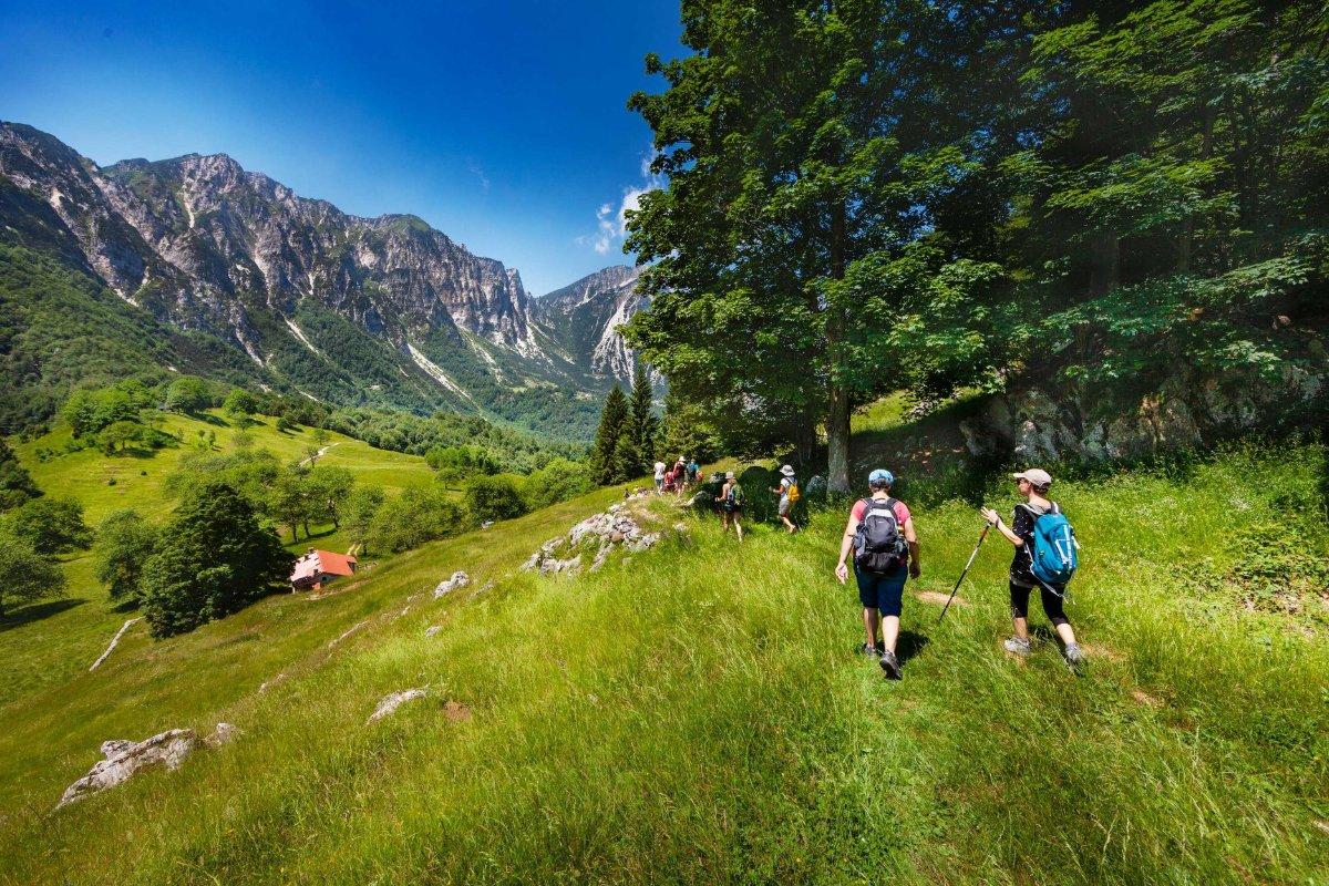 event-Monte Rove: Una Passeggiata Panoramica per la Pace dei Sensi