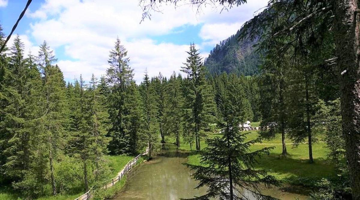 event-Escursione alle Cascate di Garés: Gemme nel Cuore delle Dolomiti