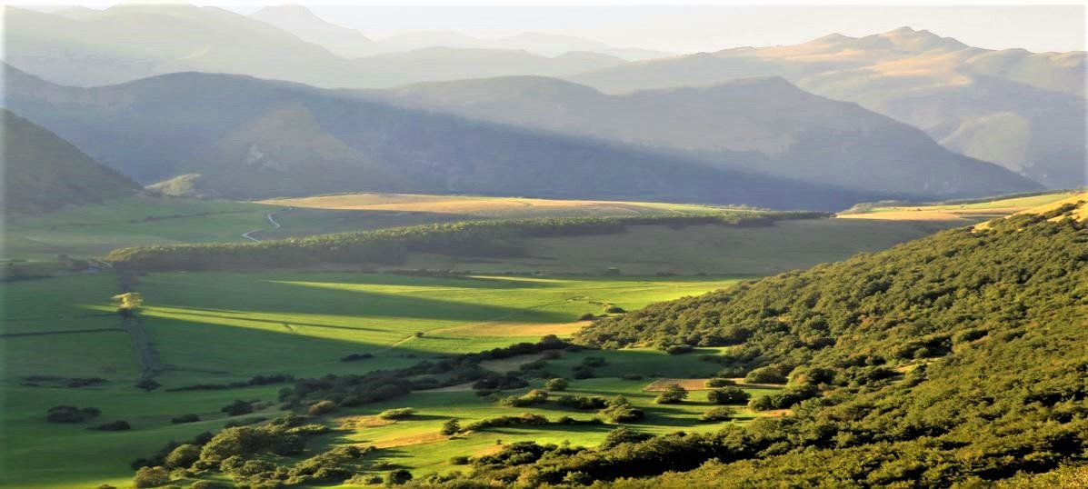 event-Escursione nella Biodiversità sull'Altopiano di Montelago