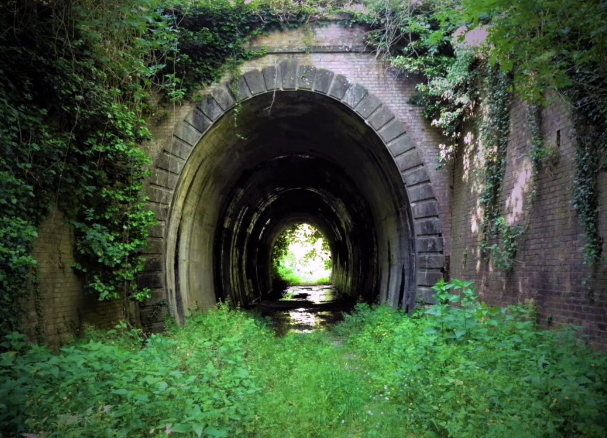 event-L'antica Ferrovia Lucca-Pontedera, scrigno di interessanti testimonianze storiche