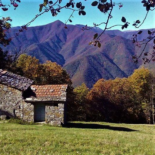 event-Tra Toscana ed Emilia: Trekking tra i Tesori dell'Appennino