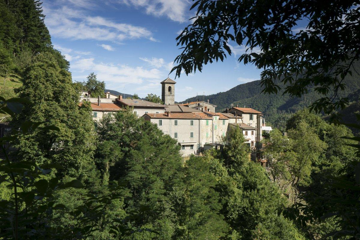 event-Una Camminata Cullati dalla Natura di Orsigna, il Borgo di Tiziano Terzani