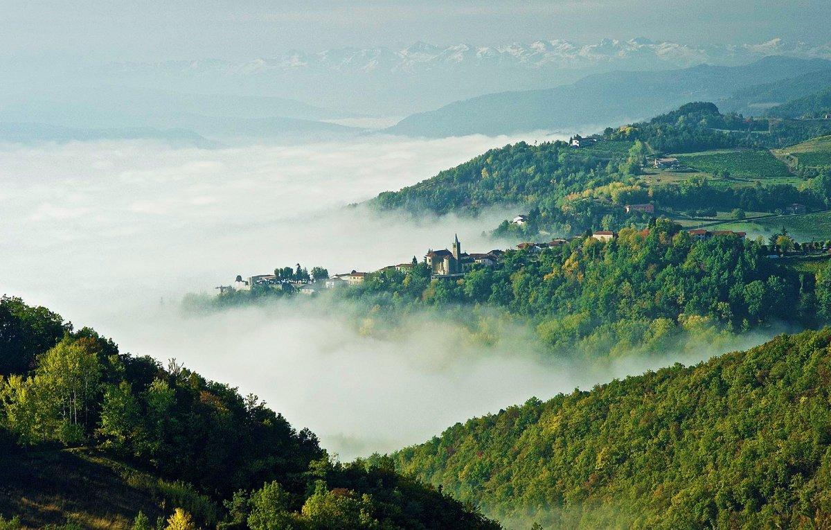 event-Loazzolo e i Sentieri del Vino: Terre dal Fascino Senza Tempo