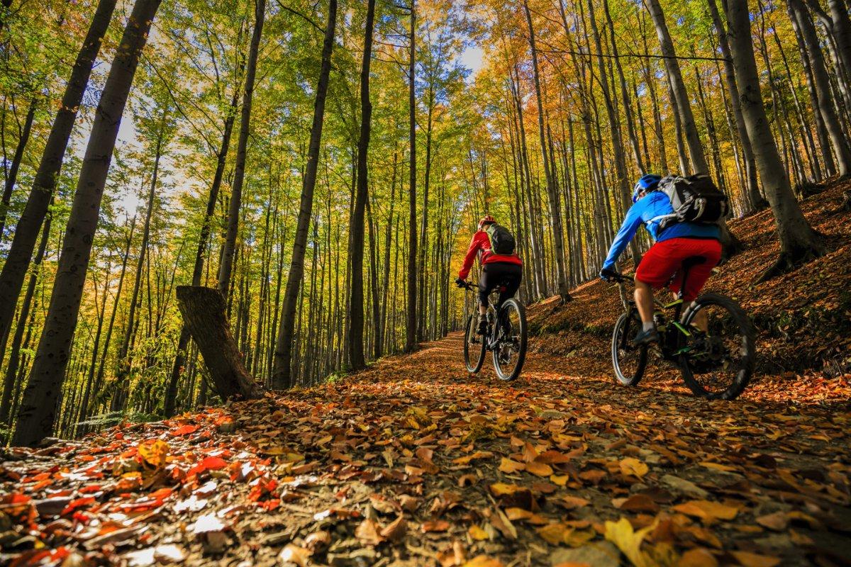 event-E-Bike Tour alla Scoperta delle Malghe Trevigiane