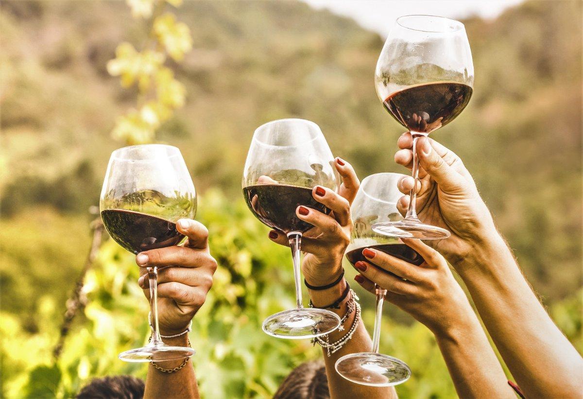 event-Esperienza Sensoriale in Valpolicella: Tra Yoga e Vini