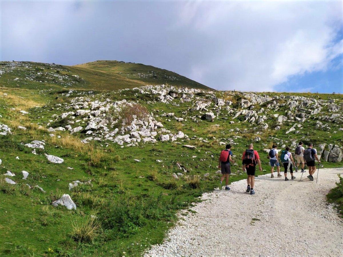 event-Cima Trappola e Passo Malera: Un Trekking tra Carega e Lessinia