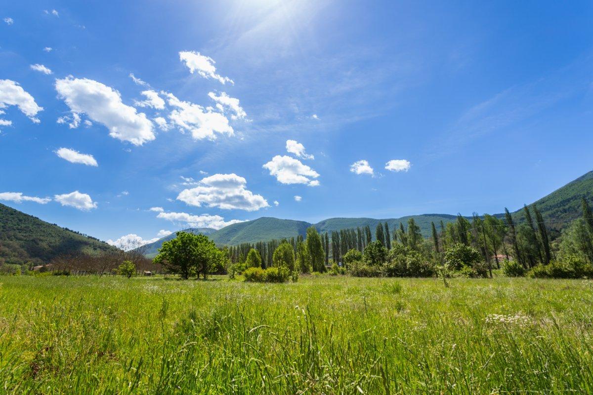 event-Escursione al Monte Vermenone, Tra Immense Praterie e Faggete Secolari