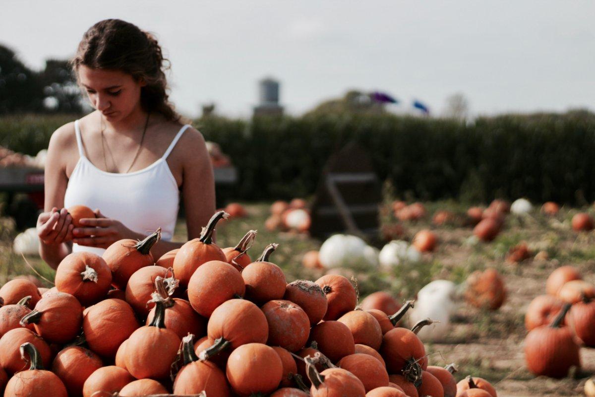 event-Halloween esclusiva Caccia al Tesoro: Due Giorni tra Sapori della La Magna Longa
