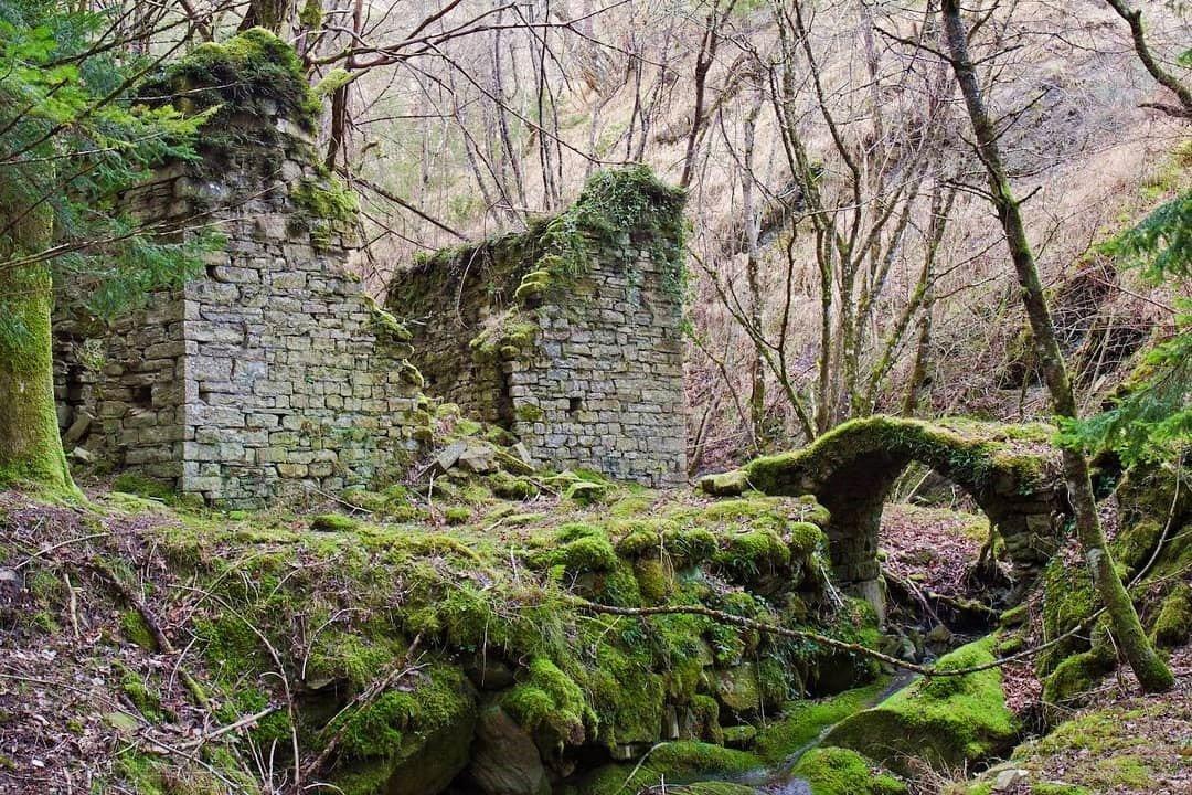 event-Antichi Borghi nelle Foreste Casentinesi
