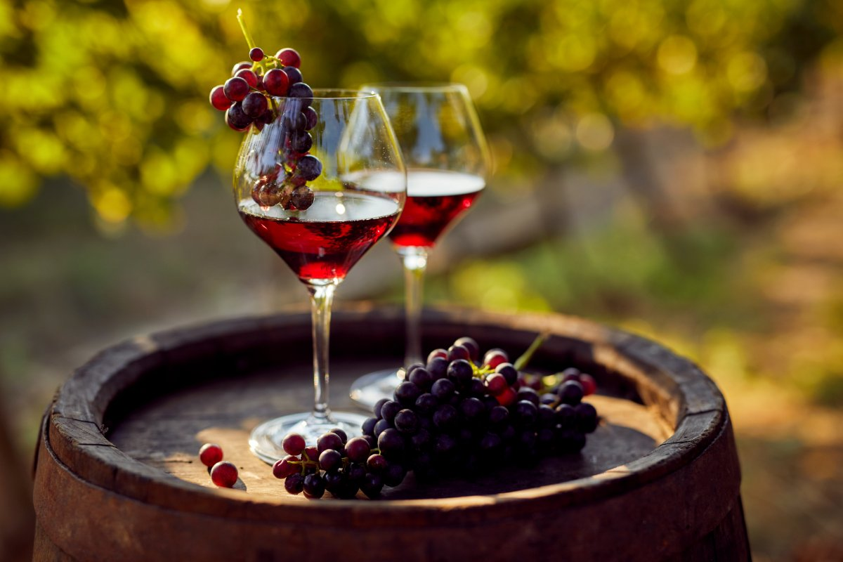 event-Degustazione di Vini ed Aceti Balsamici sui Colli Modenesi
