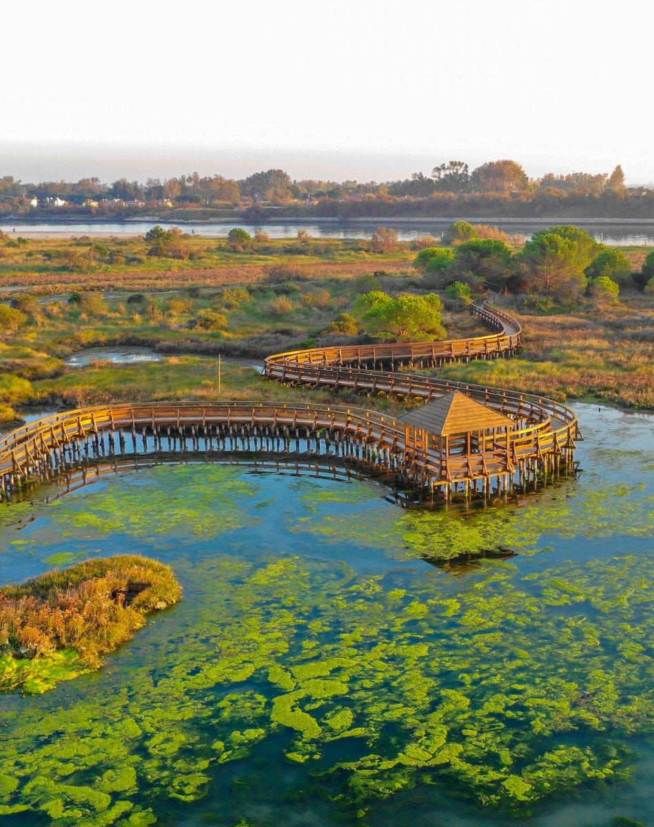 event-L'Incantesimo del Delta del Po: Passeggiata nel Giardino di Porto Caleri