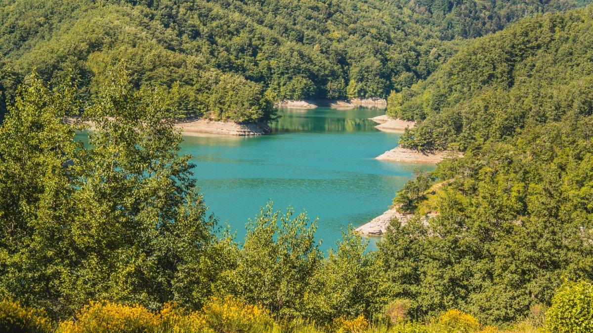 event-La Diga di Ridracoli: un Trekking nelle Foreste Casentinesi