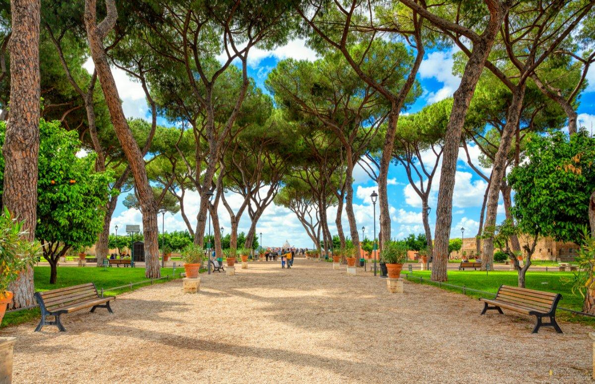 Musei Vaticani & Il Giardino degli Aranci