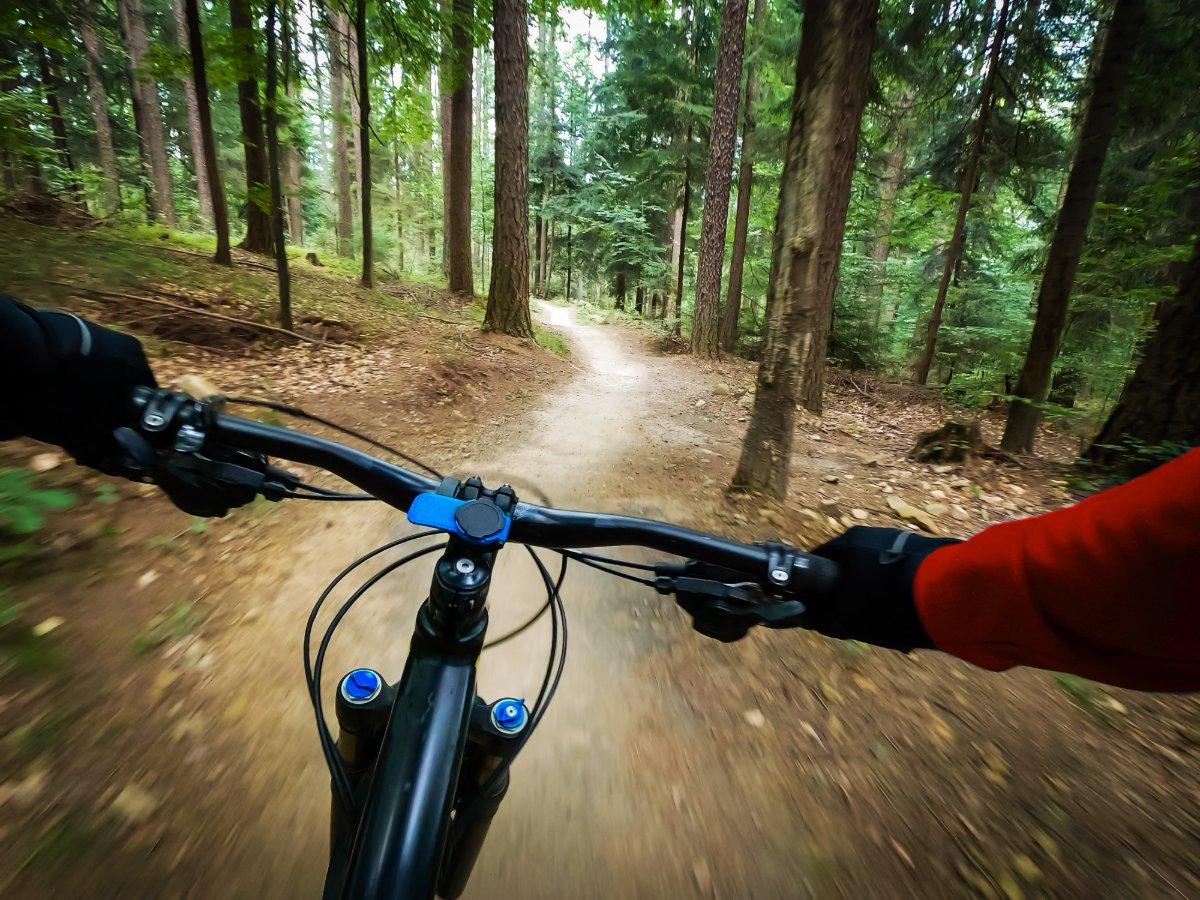 event-E-Bike Tour nel Bosco del Montello