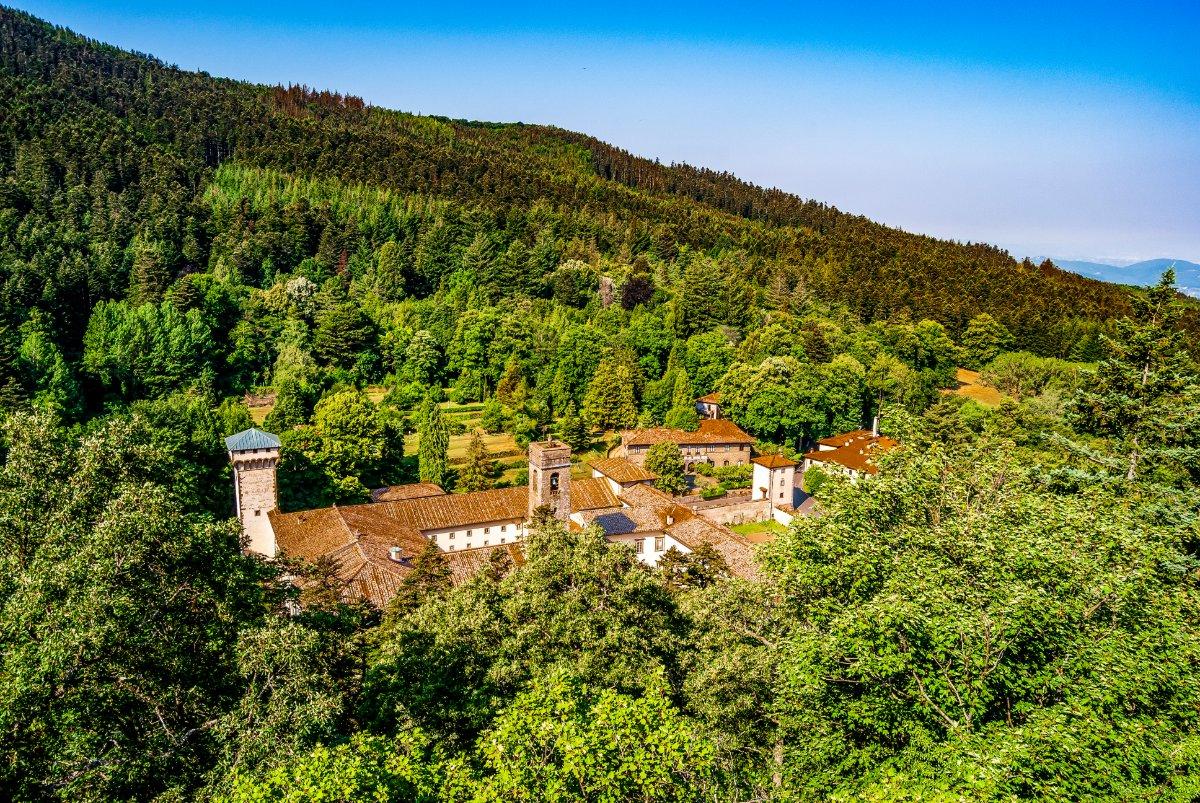 event-Magia dell'Autunno: Escursione tra le Secolari Foreste di Vallombrosa