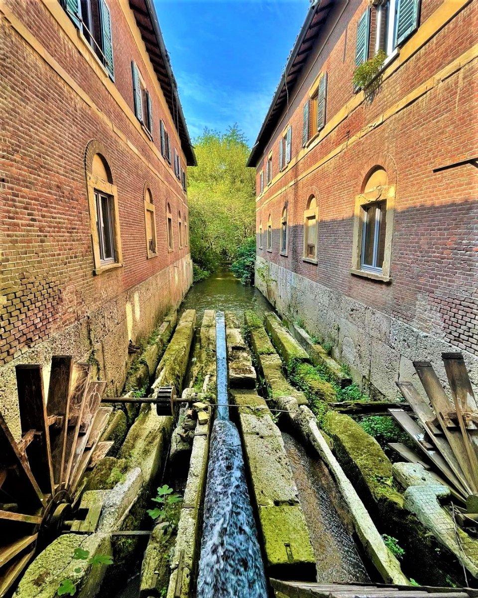 event-Passeggiata nel Parco di Monza: Tra Mulini, Rogge e Antichi Mestieri